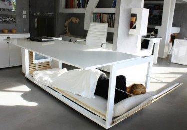 Desk Naps